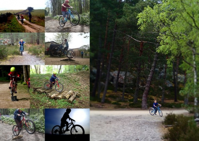 Isla Bikes Collage